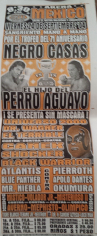 source: http://www.thecubsfan.com/cmll/images/Checked/2013-09-15%2023.43.27.jpg