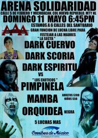 source: http://luchamaniamonterrey.com/wp-content/uploads/2014/05/10258644_483094621824419_8201697013736337038_o.jpg