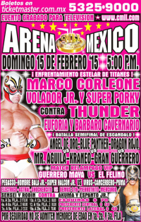 source: http://cmll.com/01_cartelera/img_arenamex/domingo.JPG