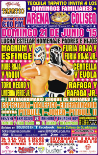 source: http://cmll.com/wp-content/uploads/2015/04/gdl.jpg