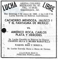 source: http://www.thecubsfan.com/cmll/images/cards/19800504acg.PNG