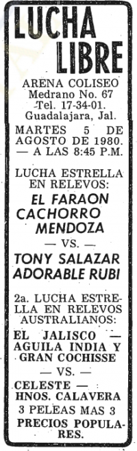 source: http://www.thecubsfan.com/cmll/images/cards/19800805acg.PNG