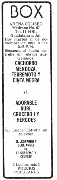 source: http://www.thecubsfan.com/cmll/images/cards/19801111acg.PNG