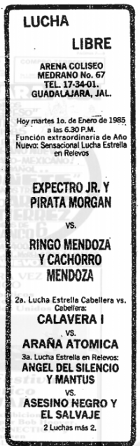 source: http://www.thecubsfan.com/cmll/images/cards/19850101acg.PNG