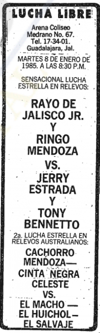 source: http://www.thecubsfan.com/cmll/images/cards/19850108acg.PNG