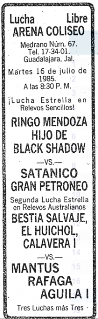 source: http://www.thecubsfan.com/cmll/images/cards/19850716acg.PNG