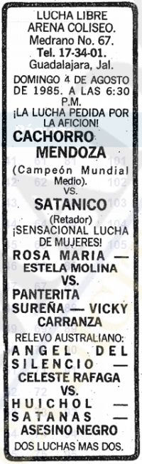 source: http://www.thecubsfan.com/cmll/images/cards/19850804acg.PNG