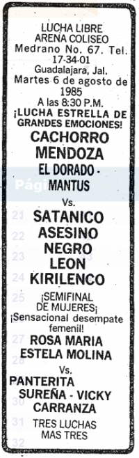 source: http://www.thecubsfan.com/cmll/images/cards/19850806acg.PNG