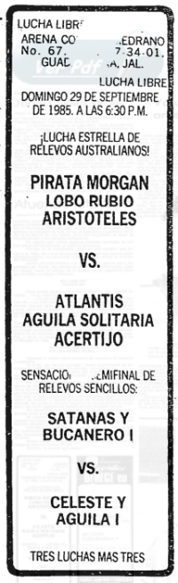 source: http://www.thecubsfan.com/cmll/images/cards/19850929acg.PNG