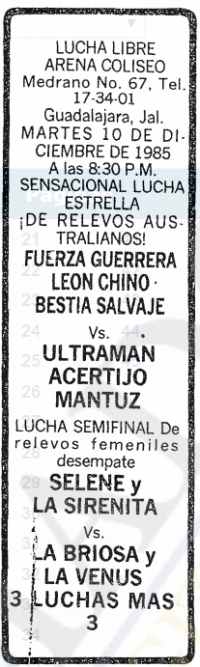 source: http://www.thecubsfan.com/cmll/images/cards/19851210acg.PNG