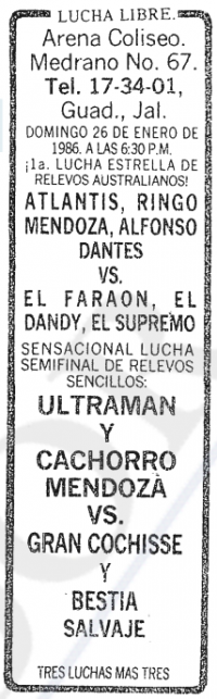 source: http://www.thecubsfan.com/cmll/images/cards/19860126acg.PNG