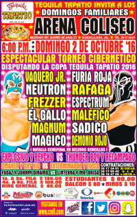source: http://cmll.com/wp-content/uploads/2015/04/gdl9.jpg