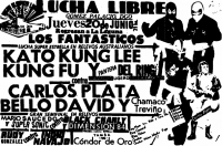 source: http://www.thecubsfan.com/cmll/images/cards/1985Laguna/19850620aol.png