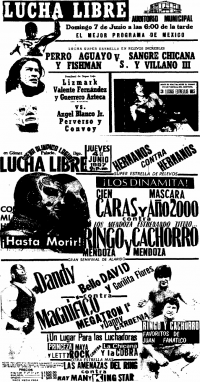 source: http://www.thecubsfan.com/cmll/images/cards/1985Laguna/19870604aol.png
