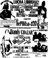 source: http://www.thecubsfan.com/cmll/images/cards/1985LagunaX/19870723aol.png