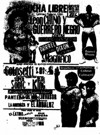 source: http://www.thecubsfan.com/cmll/images/cards/1985Laguna/19870820aol.png