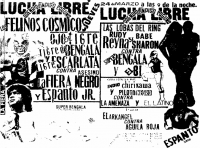 source: http://www.thecubsfan.com/cmll/images/cards/1985Laguna/19880324aol.png