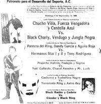 source: http://www.thecubsfan.com/cmll/images/cards/1985Laguna/19880904palacio.png