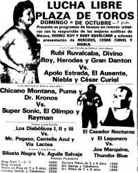 source: http://www.thecubsfan.com/cmll/images/cards/1985Laguna/19881009plaza.png