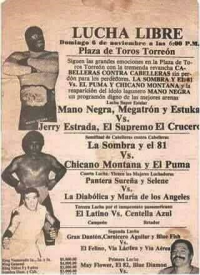 source: http://www.thecubsfan.com/cmll/images/cards/1985Laguna/19881106plaza.png