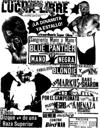 source: http://www.thecubsfan.com/cmll/images/cards/1985Laguna/19890112aol.png
