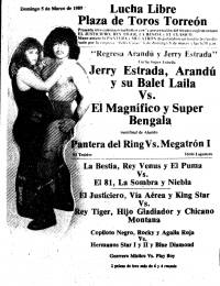 source: http://www.thecubsfan.com/cmll/images/cards/1985Laguna/19890305plaza.png