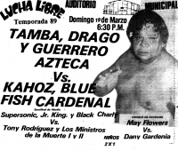 source: http://www.thecubsfan.com/cmll/images/cards/1985Laguna/19890319auditorio.png