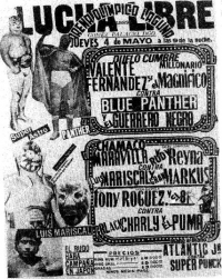 source: http://www.thecubsfan.com/cmll/images/cards/1985Laguna/19890504aol.png