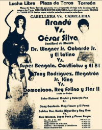 source: http://www.thecubsfan.com/cmll/images/cards/1985Laguna/19890528plaza.png