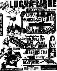 source: http://www.thecubsfan.com/cmll/images/cards/1985Laguna/19890608aol.png