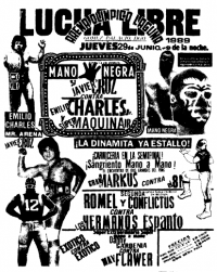source: http://www.thecubsfan.com/cmll/images/cards/1985Laguna/19890629aol.png