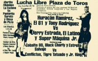 source: http://www.thecubsfan.com/cmll/images/cards/1985Laguna/19890709plaza.png