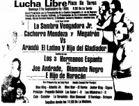 source: http://www.thecubsfan.com/cmll/images/cards/1985Laguna/19890903plaza.png