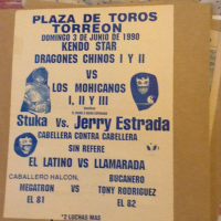 source: http://www.thecubsfan.com/cmll/images/cards/1990Laguna/19900603plaza.png