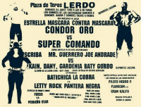 source: http://www.thecubsfan.com/cmll/images/cards/1990Laguna/19900624lerdo.png