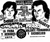 source: http://www.thecubsfan.com/cmll/images/cards/1990Laguna/19900708auditorio.png