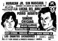 source: http://www.thecubsfan.com/cmll/images/cards/1990Laguna/19900805auditorio.png