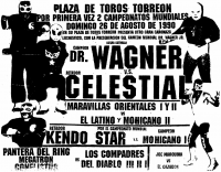 source: http://www.thecubsfan.com/cmll/images/cards/1990Laguna/19900826plaza.png