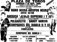 source: http://www.thecubsfan.com/cmll/images/cards/1990Laguna/19900902plaza.png