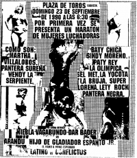 source: http://www.thecubsfan.com/cmll/images/cards/1990Laguna/19900923plaza.png