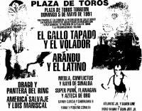 source: http://www.thecubsfan.com/cmll/images/cards/1990Laguna/19910505plaza.png