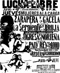 source: http://www.thecubsfan.com/cmll/images/cards/1990Laguna/19910606aol.png