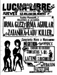 source: http://www.thecubsfan.com/cmll/images/cards/1990Laguna/19910815aol.png