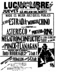 source: http://www.thecubsfan.com/cmll/images/cards/1990Laguna/19920109aol.png