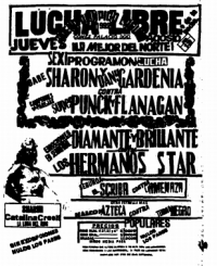 source: http://www.thecubsfan.com/cmll/images/cards/1990Laguna/19920813aol.png