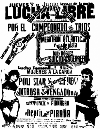 source: http://www.thecubsfan.com/cmll/images/cards/1990Laguna/19940602aol.png