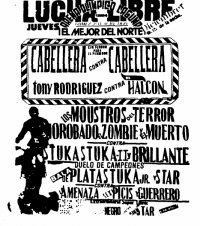 source: http://www.thecubsfan.com/cmll/images/cards/1990Laguna/19941201aol.png