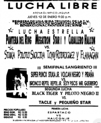 source: http://www.thecubsfan.com/cmll/images/cards/1990Laguna/19950112aol.png
