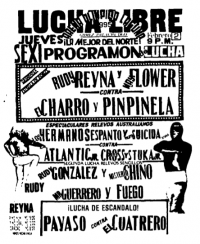 source: http://www.thecubsfan.com/cmll/images/cards/1990Laguna/19950202aol.png