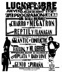 source: http://www.thecubsfan.com/cmll/images/cards/1990Laguna/19950525aol.png